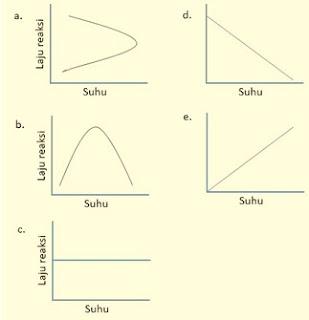 grafik pengaruh suhu terhadap kerja enzim