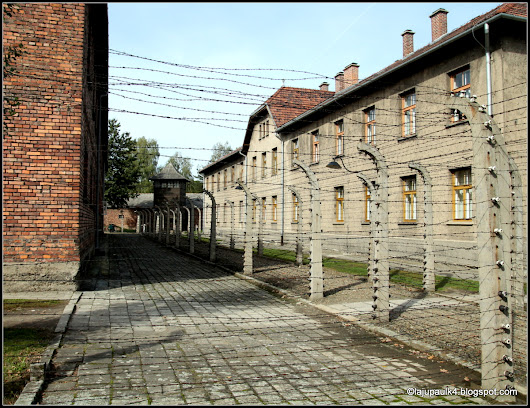 The electrified barbed wire fence surrounding the barracks buildings in Auschwitz I.