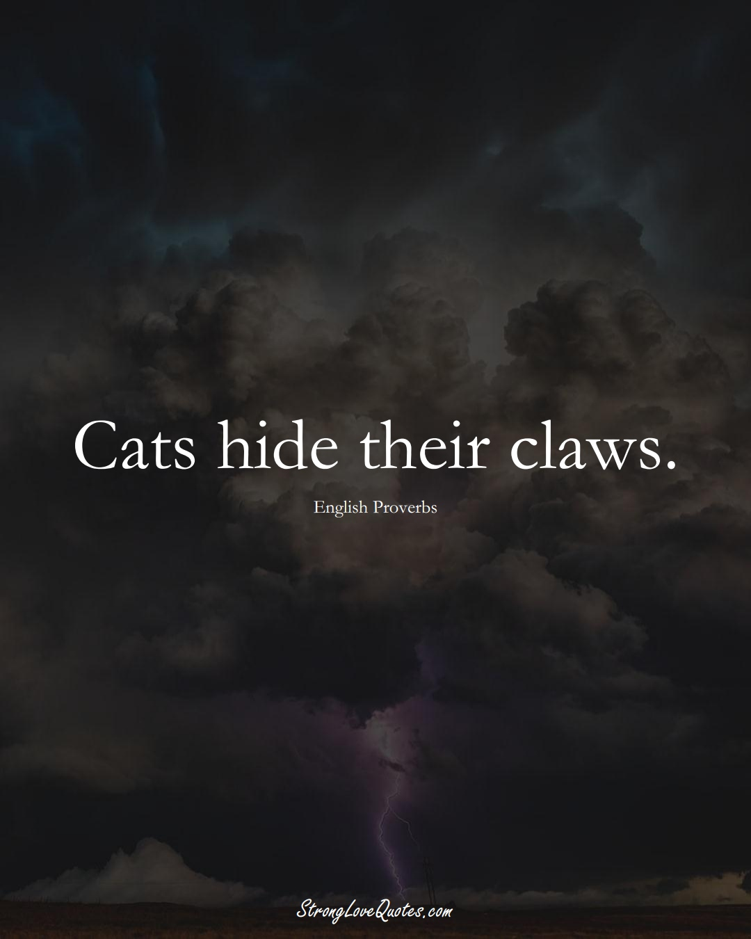 Cats hide their claws. (English Sayings);  #EuropeanSayings