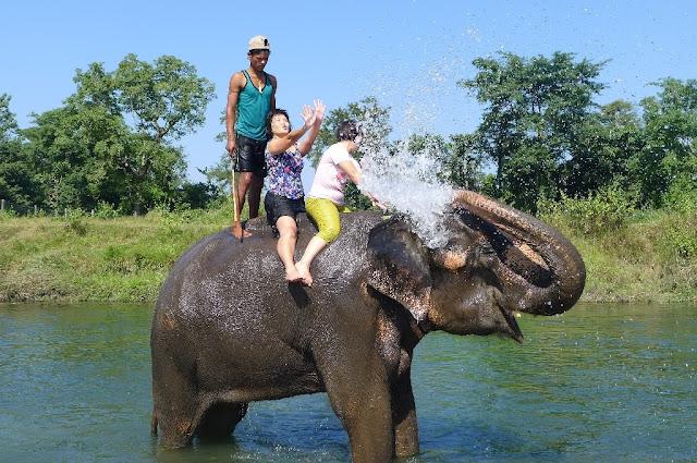 Chitwan trip ( Elephant Bath )