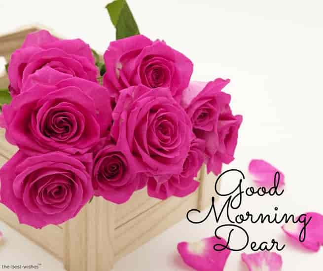 good morning dear mom