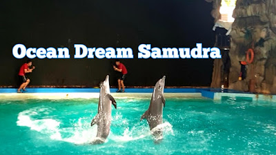 Harga Tiket Masuk Ocean Dream Samudra Ancol Jakarta