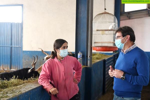 José Adrián Hernández aborda con Brenda Rodríguez la situación del sector ganadero insular