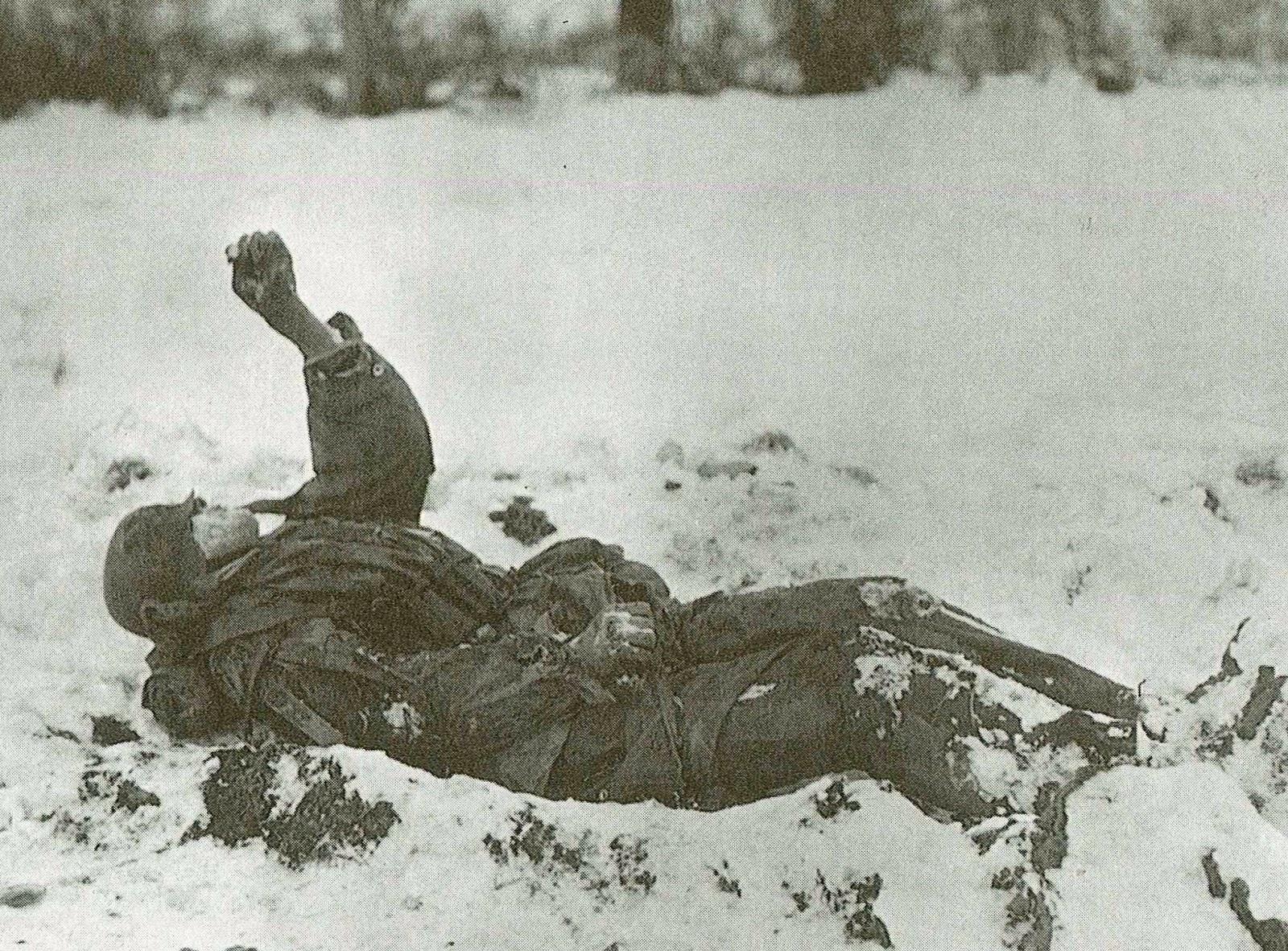 ドイツ新兵の雪山戦死 | NGO平和...