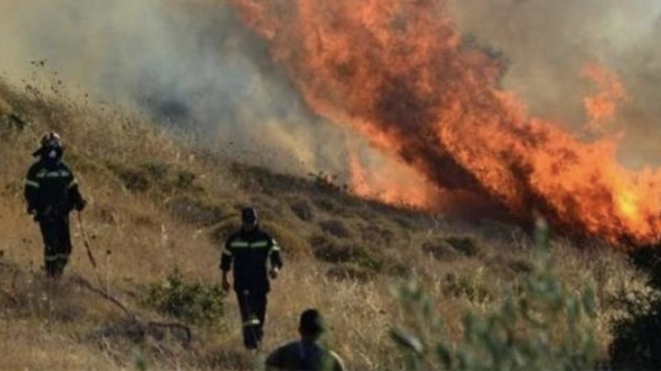 Σέρρες: Σύλληψη 80χρονου για πρόκληση πυρκαγιάς στα Θερμά Νιγρίτας