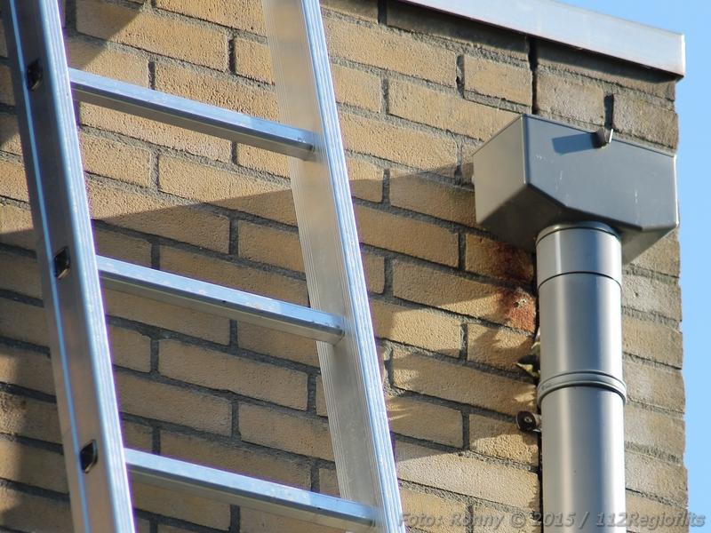 Vogeltje Vast Achter Regenpijp Van Gebouw 112 Regio Flitsen
