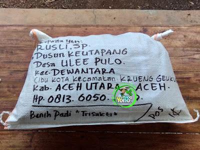 Benih pesanan  RUSLI. SP Aceh Utara, Aceh.  (Setelah Packing)