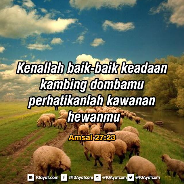 Amsal 27:23