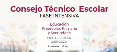 Consejo Técnico Escolar Fase intensiva Educación preescolar, primaria y secundaria.