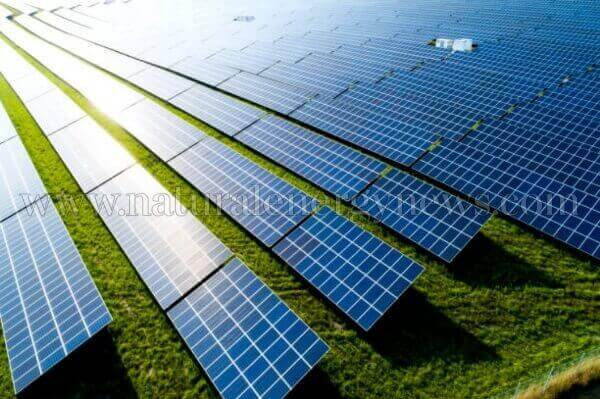 Andhra Pradesh issues tender for 6.4 GW of solar power projects for the farmers of the state
