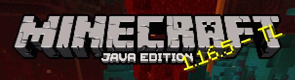 Minecraft: Java Edition - 1.16.5
