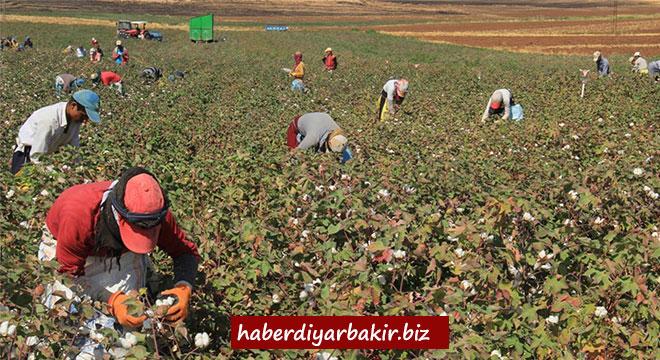 Diyarbakırlı çiftçiler, desteğin artırılmasını mazot fiyatının düşürülmesini istiyor