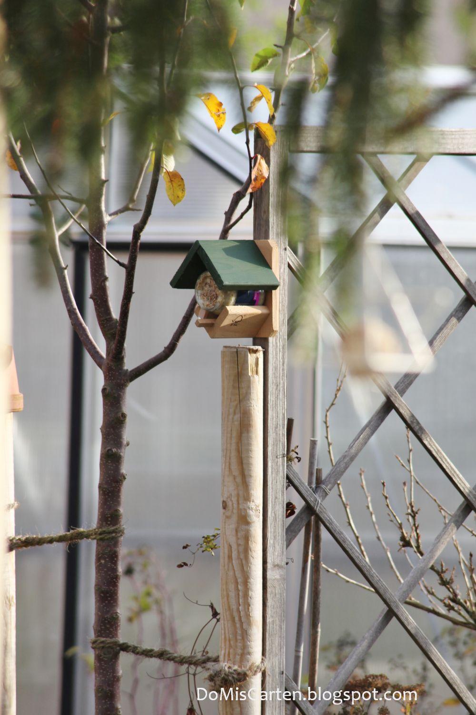 halterung erdnussbutter für vögel