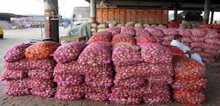 onion-export-close