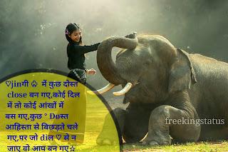 . Dosti shayari in hindi, friendship shayari in hindi