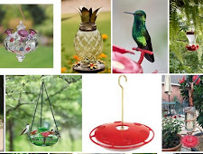 3 creative things so that Hummingbird Feeders at home at home
