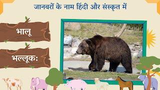bear name in sanskrit and hindi with images