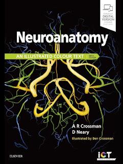 Neuroanatomy An Illustrated Colour Text 6th Edition