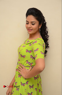 Actress Sri Mukhi Latest Pictures in Green Dress at Mental Movie Audio Launch  0012