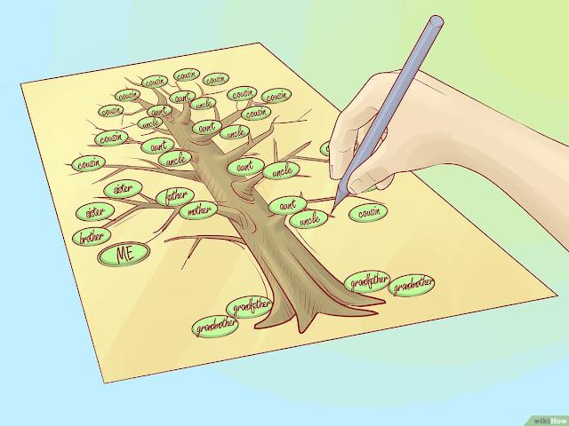 مشروع تصميم شجرة العائلة و تحديد الاقارب الابعد زيارة