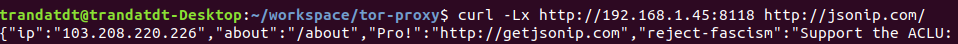 check current ip address with command line