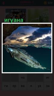 651 слов игуана под водой плывет 3 уровень