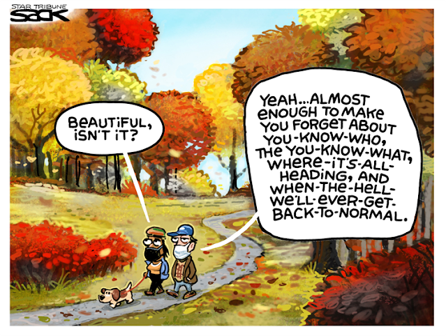 Couple walking a dog through park in glorious fall foliage.  Woman says,