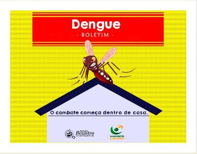 Dengue: Boletim Epidemiológico de Registro-SP