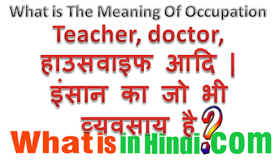 What is the meaning of Occupation  in Hindi