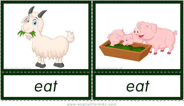 Verb eat (goat and pigs eating) - printable animal actions flashcards for English learners