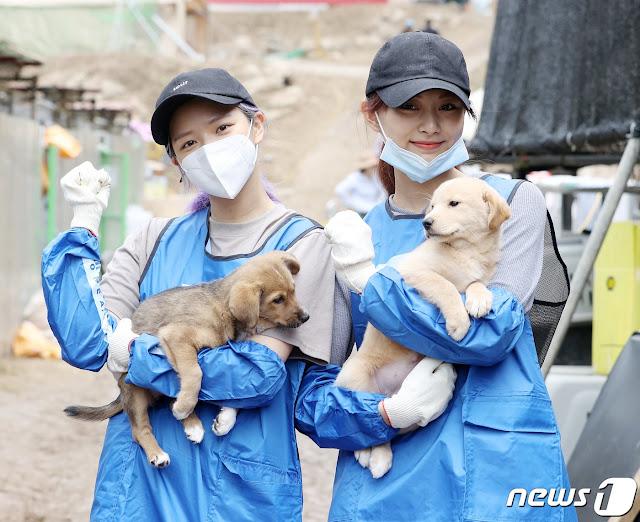 Twice Jeongyeon and Tzuyu Animal Shelter