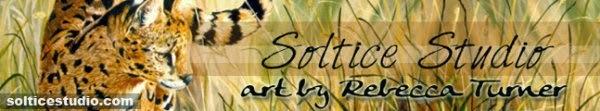 Solstice Studio