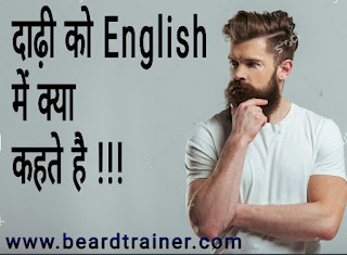 Beard Meaning In English