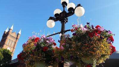 Victoria's hanging flower baskets