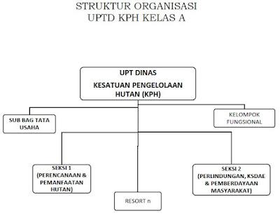 struktur organisasi UPTD Kesatuan Pengelolaan Hutan KELAS A