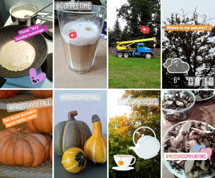 september instagram stories, pumpkin spice latté, mushroom hunting, cooking pancakes, spoilt milk, autumn instagram, georgiana quaint