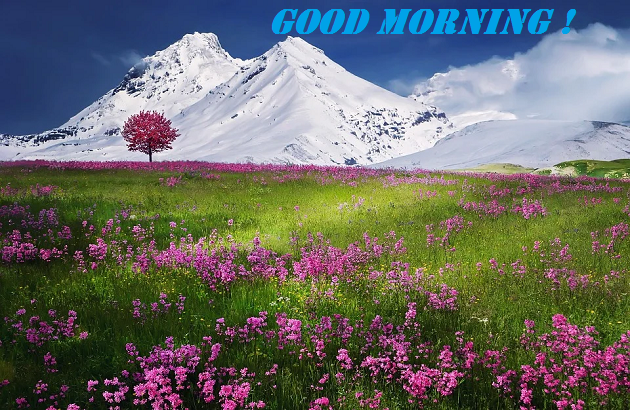 nature Good Morning Scenery Images