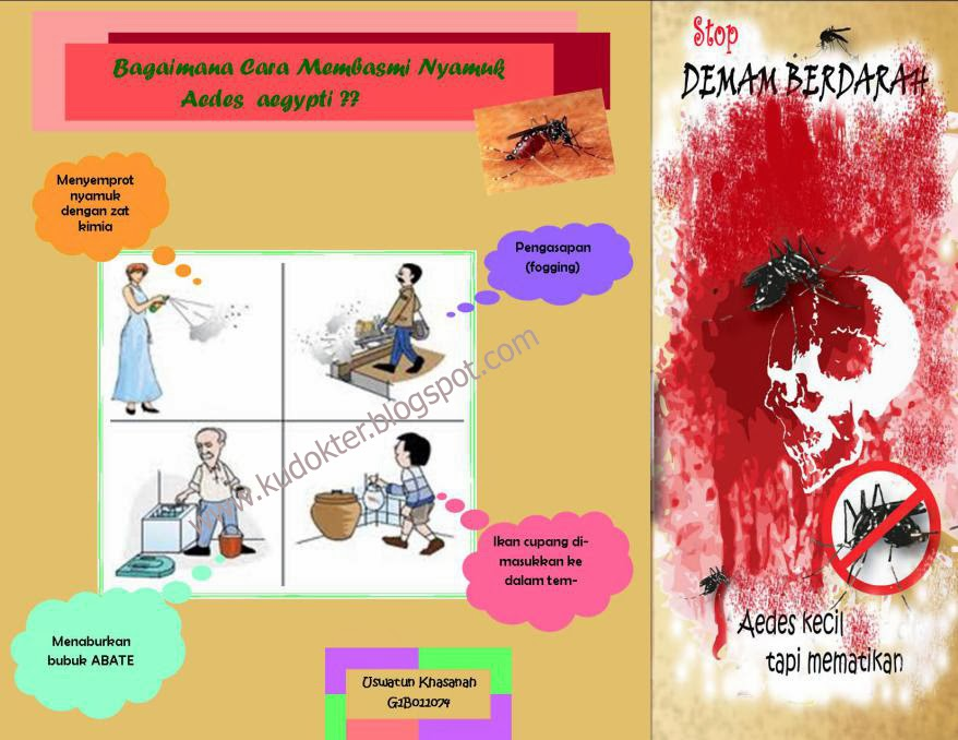 Cara Mengobati Demam Berdarah Pada Anak - Kudokter Herbal ...