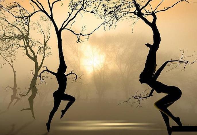 árboles bailando