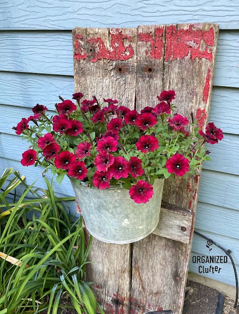 Photo of a junk garden bucket mounted on an old wagon board