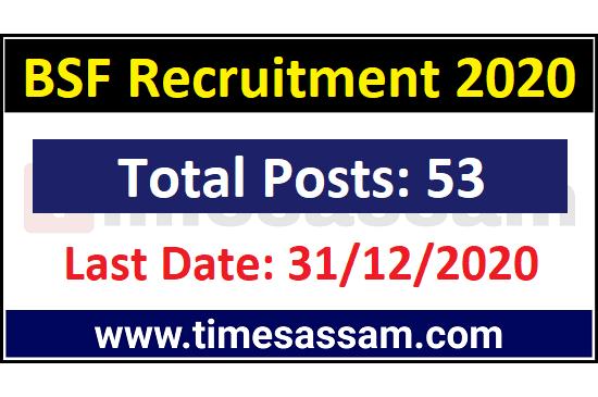BSF Jobs 2020