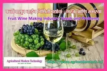 फळांपासून वाईन निर्मिती उद्योग : गरज आणि समस्या