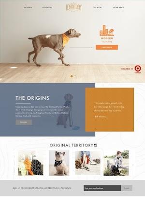Dịch vụ thiết kế web thú cưng