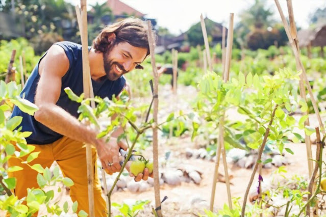 Permaculture garden ethics and principles