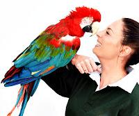 Bir bayanın kolunda papağan