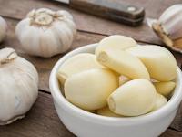 Tips Mengatasi Hama Bawang Putih yang Tepat