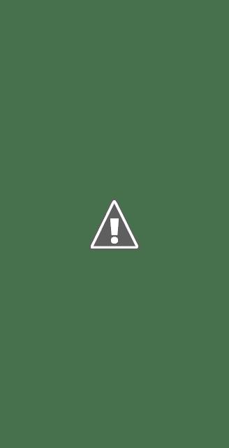 Vos annonces de promotion d\'application sont désormais éligibles pour s'afficher dans la partie haute des résultats de recherche mobile de YouTube.
