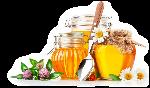 beberapa senyawa dan mineral yang terkandung dalam madu klanceng