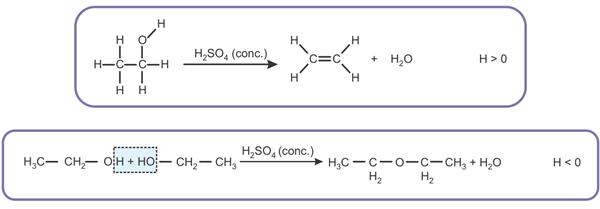 (Albert Einstein 2016) Os álcoois sofrem desidratação em meio de ácido sulfúrico concentrado. A desidratação pode ser intermolecular ou intramolecular dependendo da temperatura.
