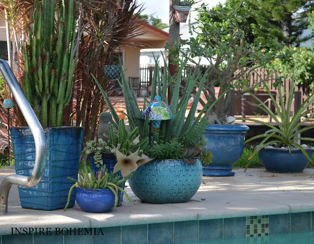 Poolside Cactus and Succulent Planter - Designer Cactus and Succulent Planters Garden Design Inspire Bohemia - Miami and Ft. Lauderdale Succulent Business